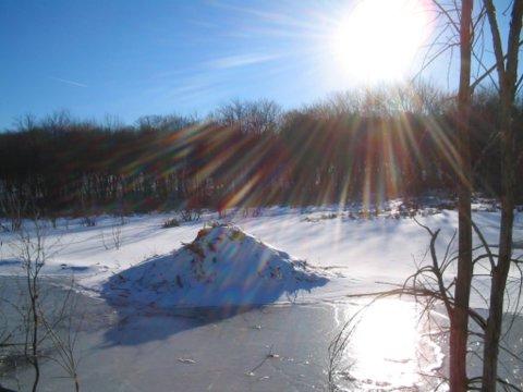 Beaver Lodge Frozen Over