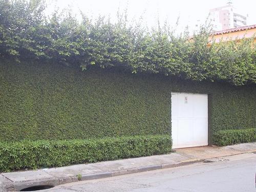 Walls Upon Walls